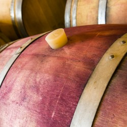 vina-las-ninas-winery-oak-barrel