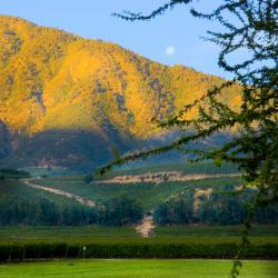 10-vina-las-ninas-landscape-2005-10-18.23.26